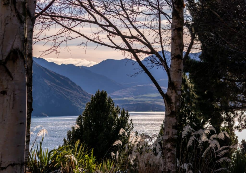 Lake Wanaka view from Whare Kea