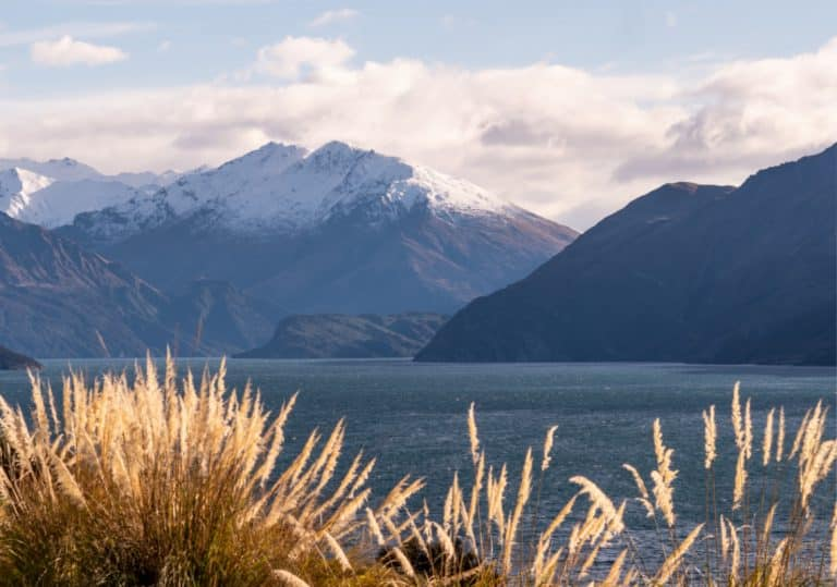 our story luxury lodge wanaka Copy of Whare Kea Stills6@2x